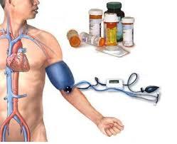 Obat Herbal Darah Tinggi ( Hipertensi )